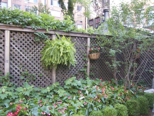 James Beard garden intro