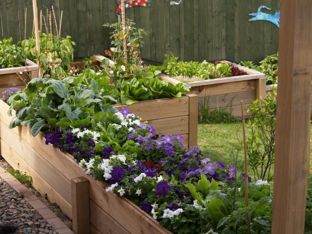 new zealand raised beds