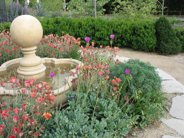 Pasadena Arlington Garden 3