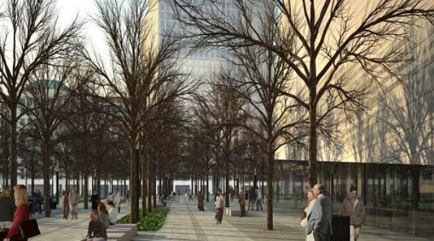trees at 9/11 memorial