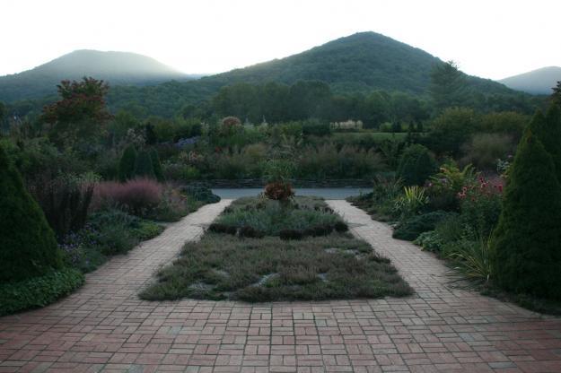 dahlia garden appalachian valley