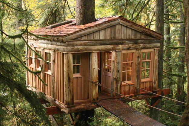Washington TreeHouse Point