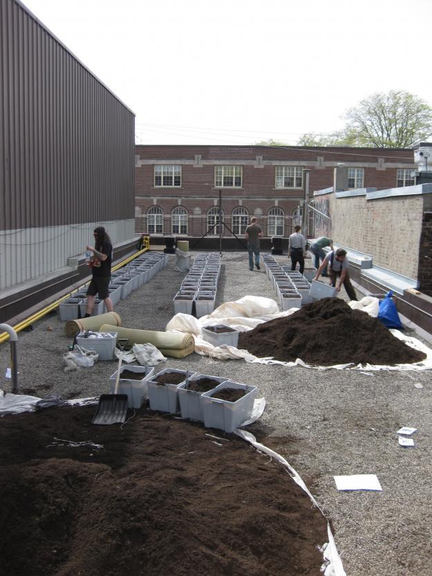 rooftop garden soil