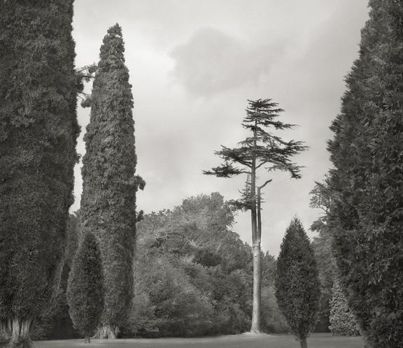 Beth Dow Blenheim Palace