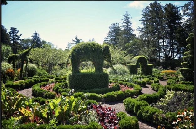 Botanic Superlatives Oldest Topiary Garden In The Us Garden Design