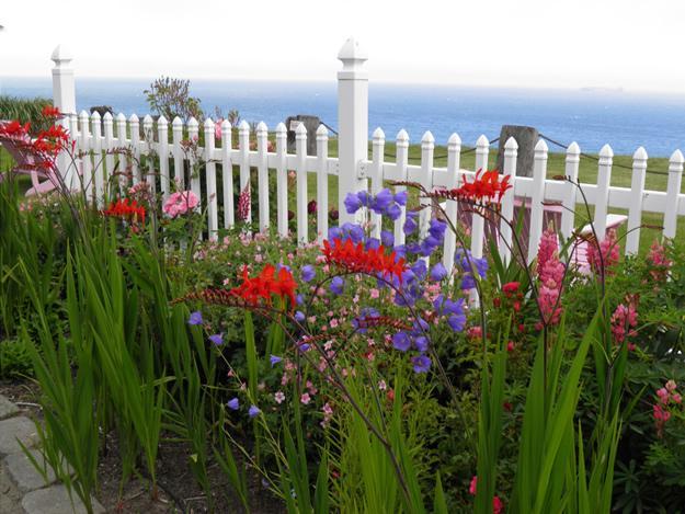 White Pickett Fence