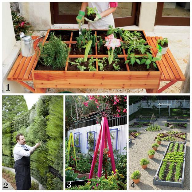 Edible Gardening