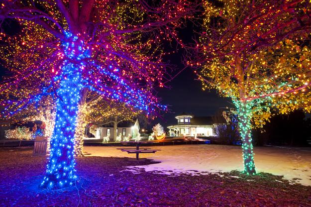 Christmas Lights Are In Bloom At The Denver Botanical Gardens A B C Na Arquitectura