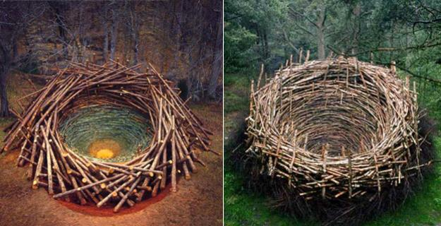 Art & Botany: Nils-Udo's Land Art