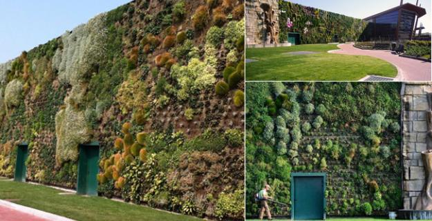 Botanic Superlatives: The World's Largest Vertical Garden