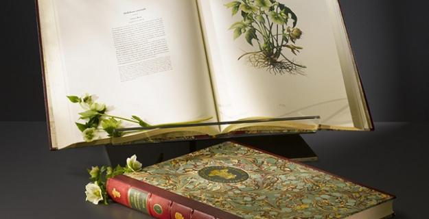 Art & Botany: Prince Charles's Book of Plants