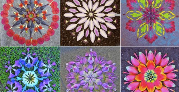 Art & Botany: Flower Mandalas