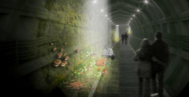 An Underground Mushroom Garden in London