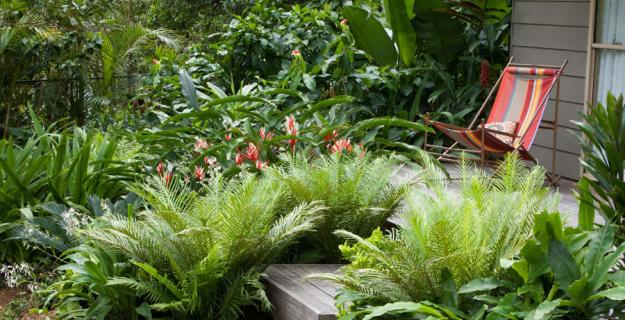 6 Cutting-Edge Garden Trends from Australia