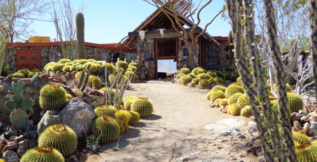 Mojave Rock Ranch Reinvents the Desert Garden