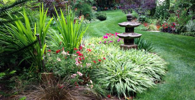 My Garden: An Eclectic Garden Delights with Unexpected Surprises