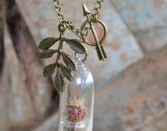 Terrarium Necklaces Combine Jewelry-Making and Gardening