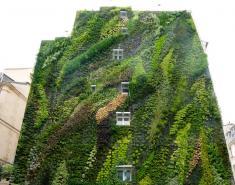 Vertical Gardens: Slide Show