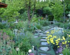 My Garden: An Ever-Changing Therapy Garden