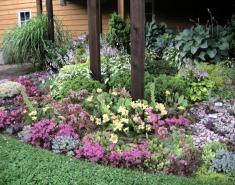 My Garden: A Rustic Perennial Paradise