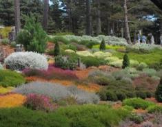 Landscape Designer Profile: Michelle Derviss Landscape Design