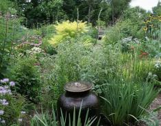 My Garden: A Native Garden Designed for All Seasons