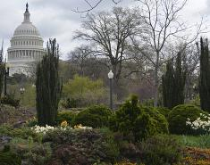 Garden Destination: Washington, DC