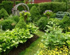 A Garden 'Gone Berserk'