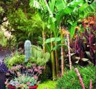 Dalbok-designed garden in San Rafael, California