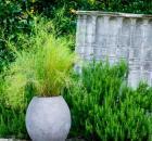 Grass - 8E1X5600