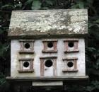 birdhouse for fun and function