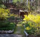 Rosemary Harris garden