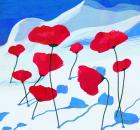 Garden Design - Poppies