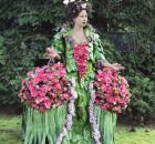 'Camellia Countessa'