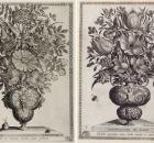 Polyptoton de Flores 1