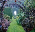 Garden Design - Well-Edited Garden