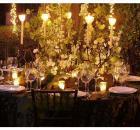 bella wedding twilight