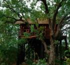 treehouse hotel tout