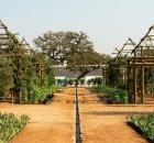 babylonstoren garden photo 1