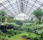 Jens Jensen garden