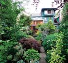 toronto shade garden 1