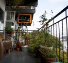 urban gardening academy