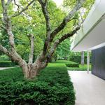 Garden Design - ModernGarden01