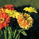 Miranda Lichtenstein flowers